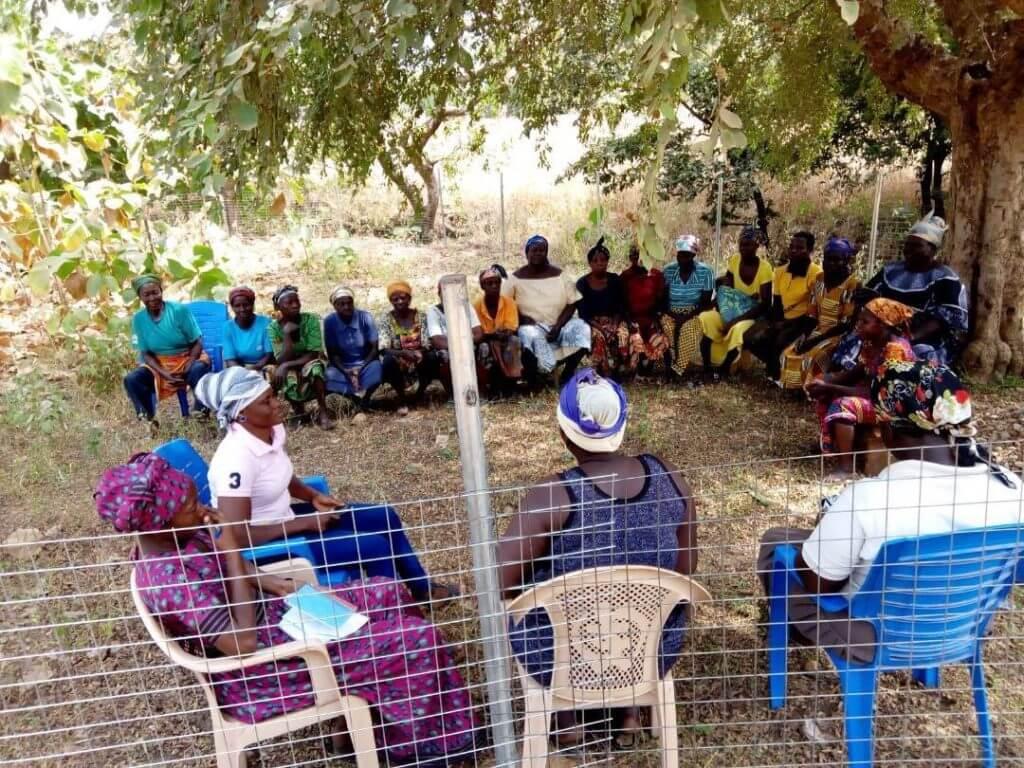 puukooli koolitus Ghana Mondo